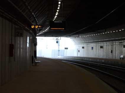 saronno seregno niente treni (3)