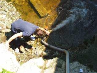 28062015 salvataggio pesci lura (10)