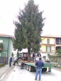 lazzate-albero-natale-5