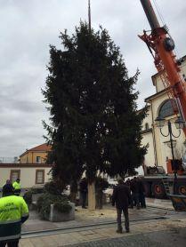 lazzate-albero-natale-7