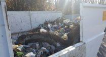 groane pulizia parco (3)