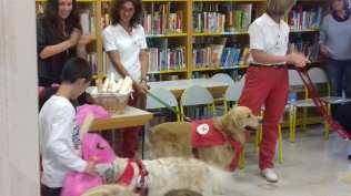 20170909 read dog sala ragazzi biblioteca (6)