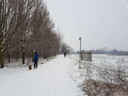 20180302 neve parco lura saronno