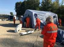 campionato cani da soccorso alpini a cogliate sett 2018 (1)