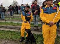 mondiali iro cani 23092018 lubiana (13)