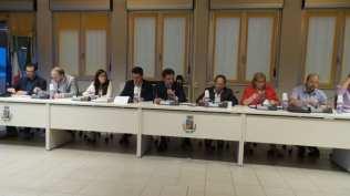 20190610 consiglio comunale uboldo (19)