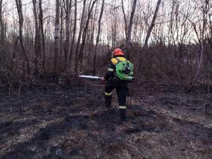 AIB antincendio boschivo