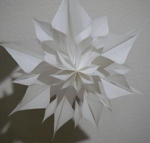 butterbrotpapier t ten stern mit beleuchtung weihnachten. Black Bedroom Furniture Sets. Home Design Ideas