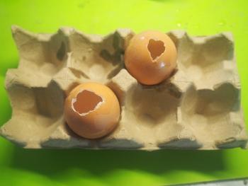vorbereitete Eier