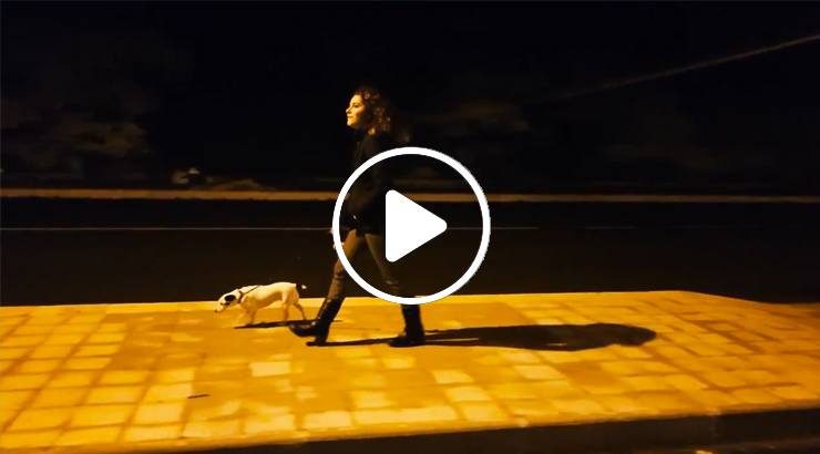 TIMIDAMENTE AMORE – Il FILM Cap 3