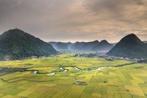 Agricoltura_Vietnam_F