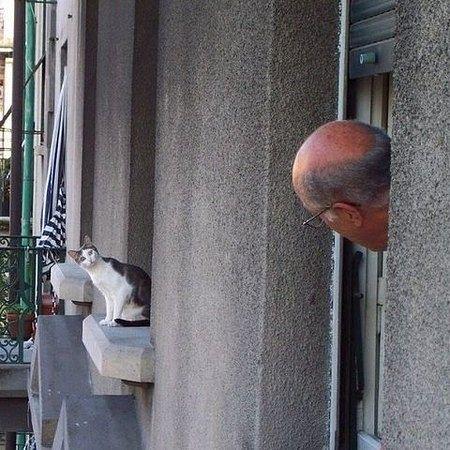 Il vicinato