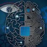Cervello biologico VS cervello artificiale