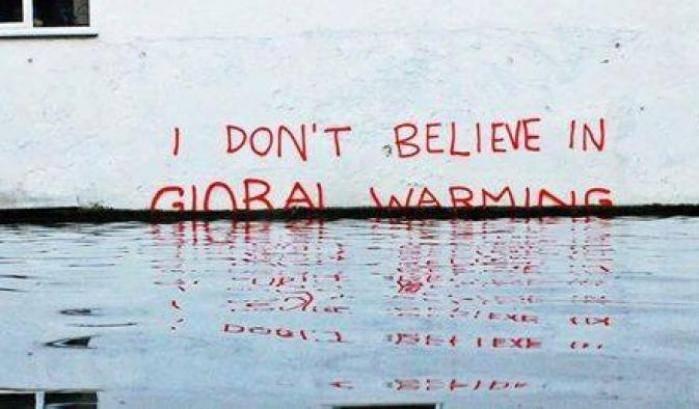 Insetti e negazionismo climatico