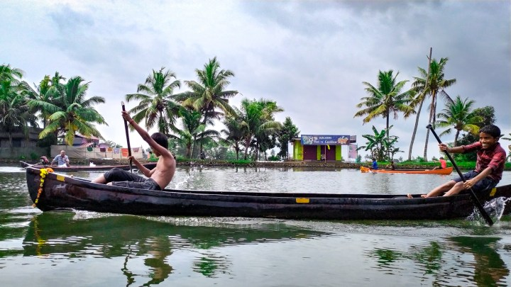 Course de barques dans les backwaters du Kerala