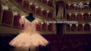 Bella Addormentata Opera di Roma.jpg