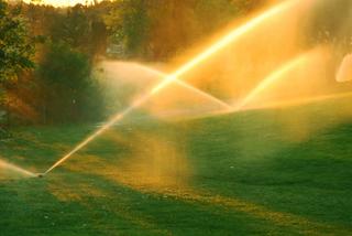 Irrigation rotor heads