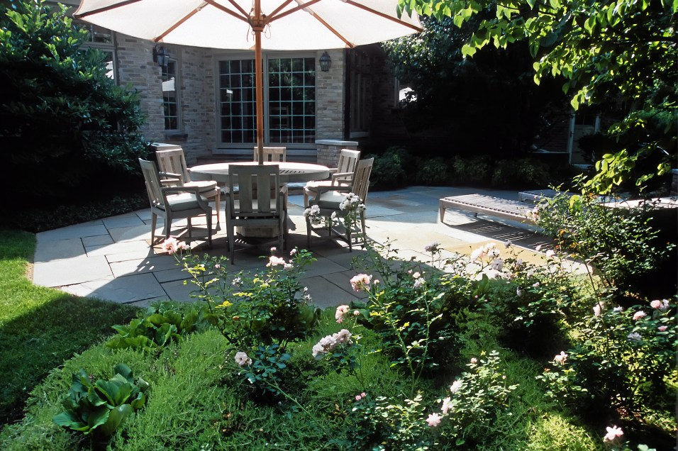 Bluestone patio, roses, berginia, sedum
