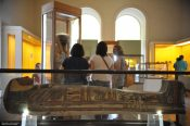 Museu família real Luzia dinossauro incêndio fogo patrimônio