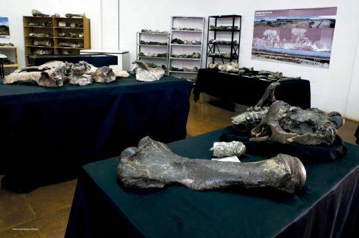 museu Piauí Serra Capivara Homem Americano Parque Nacional