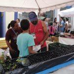 Brasil_Centro_Histórico_Gastronomia_evento_fruta_Licor_Patrimônio_Estrada Real
