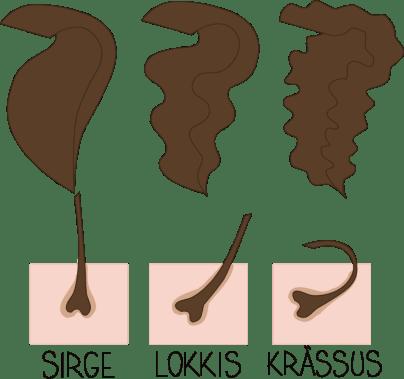 Milline on Sinu juuksetüüp? Peenike, keskmine, jäme?