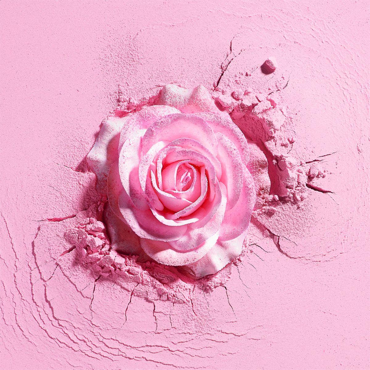 web_spring-2017-visuel-secondaire-rose-focus-merch-hd261016-5mb