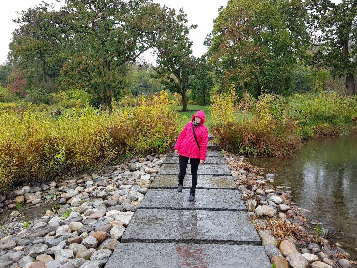Il Brooklyn Botanical Garden sotto la pioggia