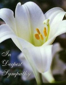 deepest_sympathy-22461