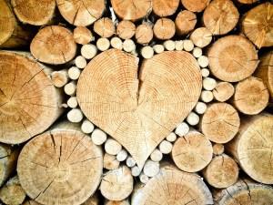 legno love