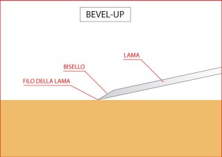 Pialla bevel up