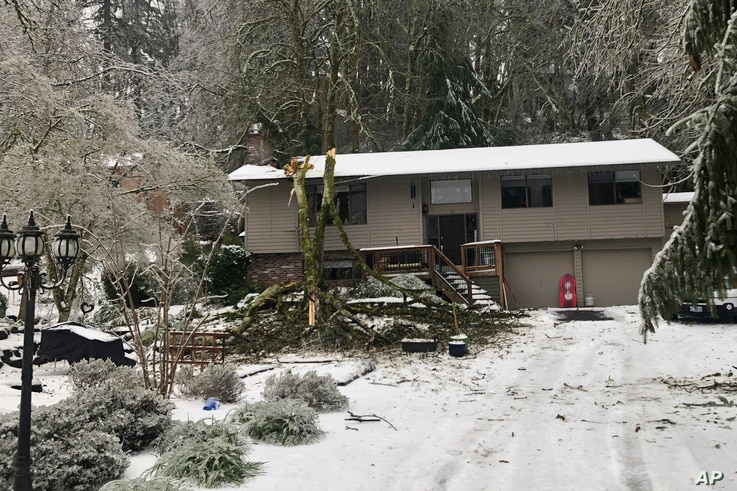 A large tree felled by an ice storm is seen on the roof of a house in Lake Oswego, Ore., on Feb. 14, 2021. More than 150,000…