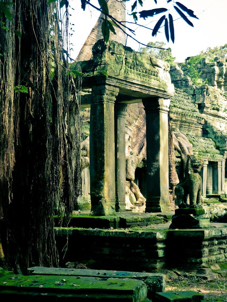 Cambodia (170 von 1242)