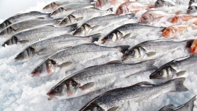 Rüyada balık görmek ne anlama gelir? Rüyada balık yemek, yakalamak, temizlemek, tutmak ne demek?