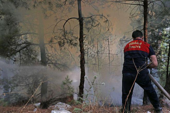 Türkiye'deki yangınlar son dakika: Yangınlarda son durum nedir? Yangınlar söndürüldü mü? 15