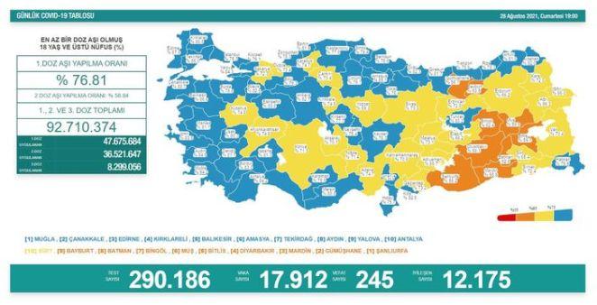 Son dakika haberi Koronavirüs salgınında yeni vaka sayısı 17 bin 332 14