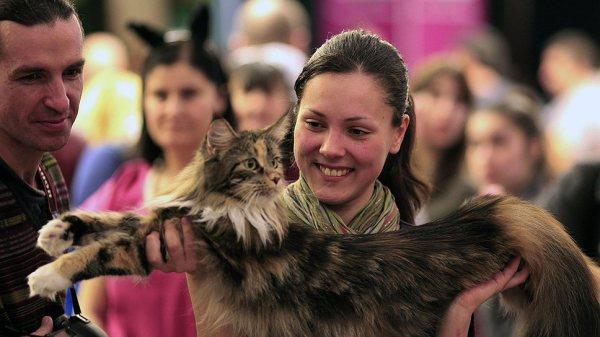 """Выставка кошек в Бухаресте – Фото – """"Коммерсантъ"""""""