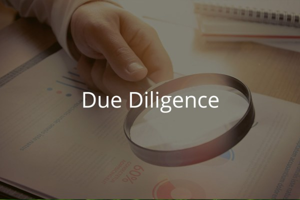 Image for Due Diligence Training Institute for Mergers