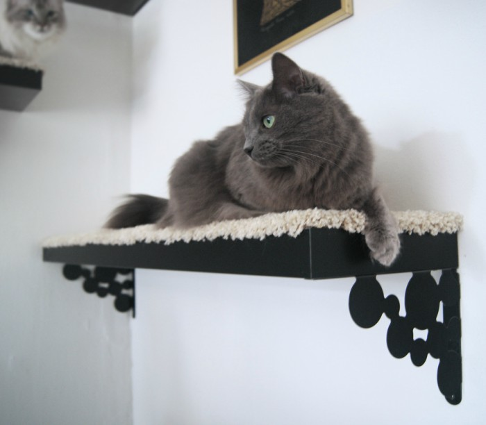 Cat Lounge Shelf