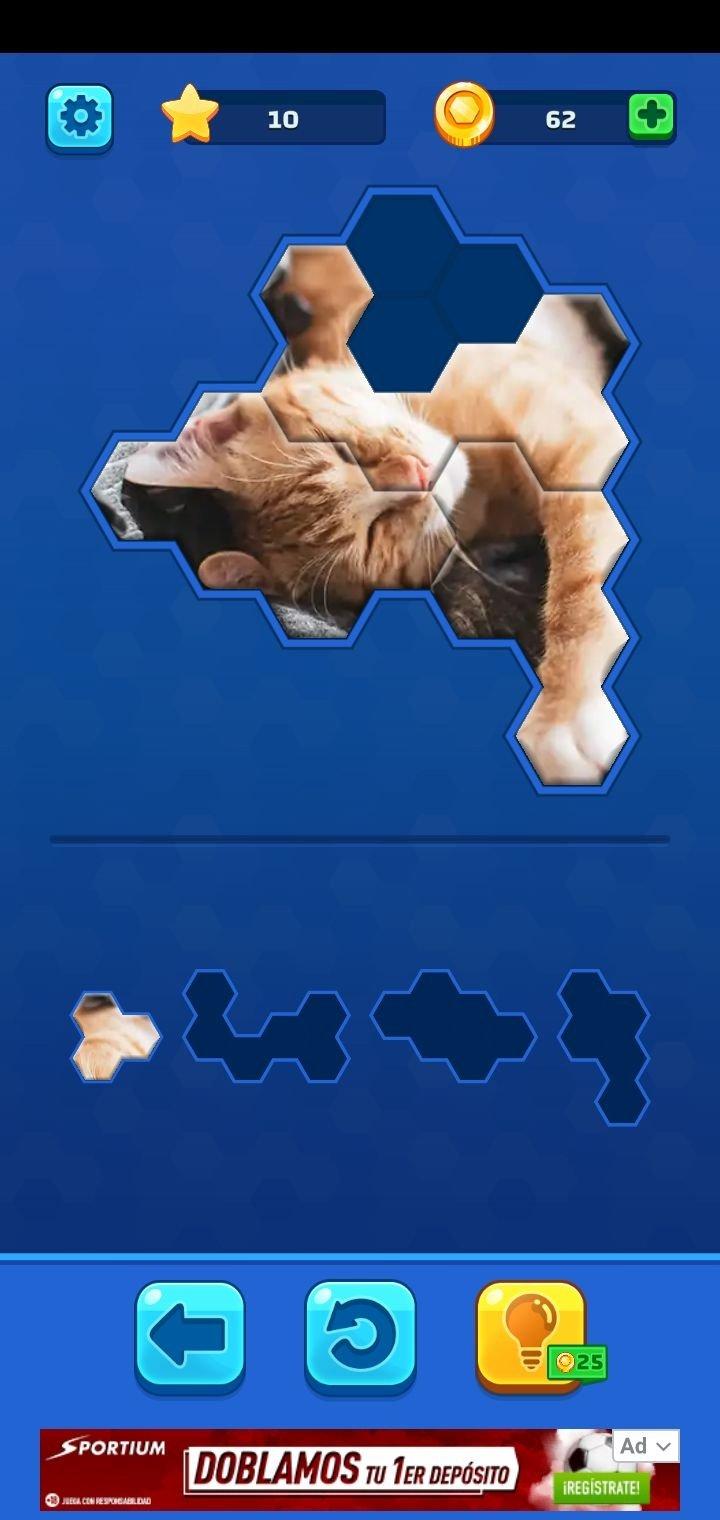 hexa jigsaw puzzle 38 01 telecharger