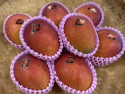 【果物の福袋】お口でとろけるあま~い幸せ!宮古島産完熟マンゴー3kg(ご家庭用)(6~9玉)