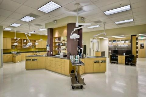 Veterinarian office, Campbell, CA
