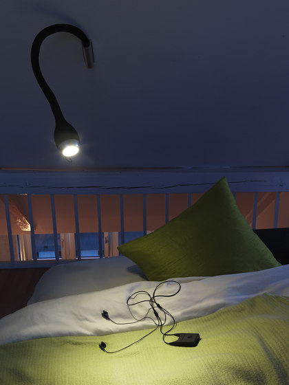 Northern Lighting Seed Lamp