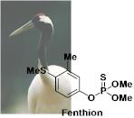 Fenthion フェンチオン