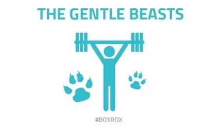 Tipi di CrossFitter - La bestia gentile
