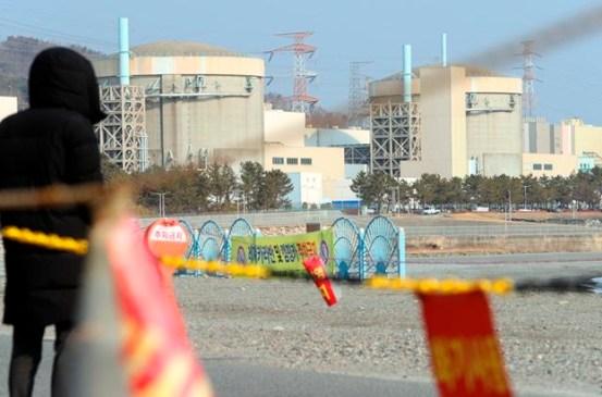 """'포요 이와 노던 콘'에 대한 의혹이 커지 자 통일부는""""북한에 원자력 발전소 건설을 추진하지 않았다"""""""