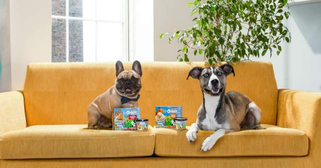 Ben & Jerry's is debuting two flavors of Doggie Desserts. They're named after Pontch (left) and Rosie, the pets of two employees.