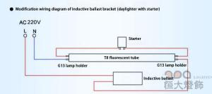 Lamp Holder Wiring Diagram  Nemiri