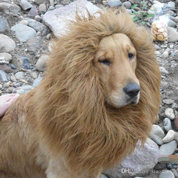 2018 Wholesale Fancy Dress Up Pet Costume Cat Halloween Clothes Lion     It will be very hard to get out if pulled inside the wig  Make sure you tie  it dead at desired size for your dog before wearing it