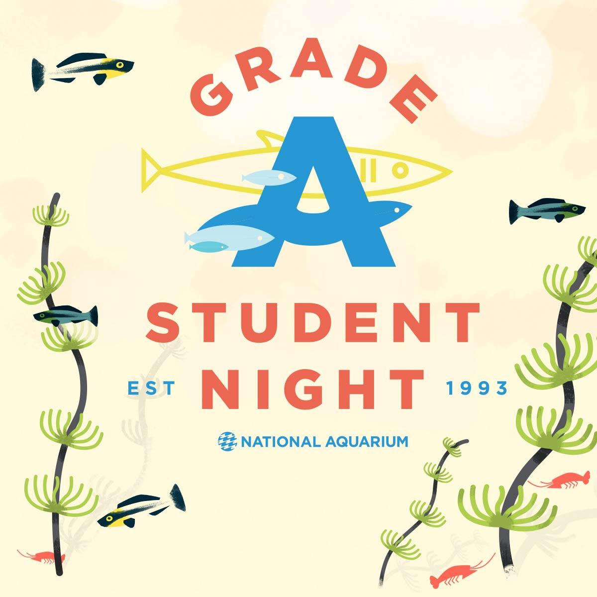 Grade A Student Night